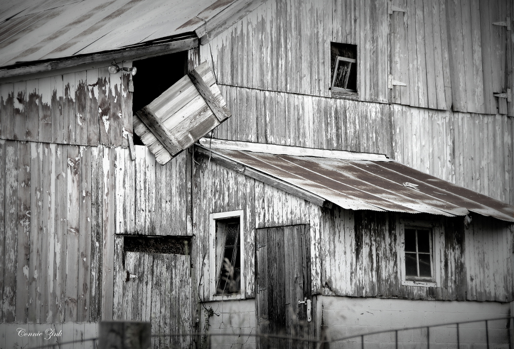 """Old Barn""Mount Carroll 2"